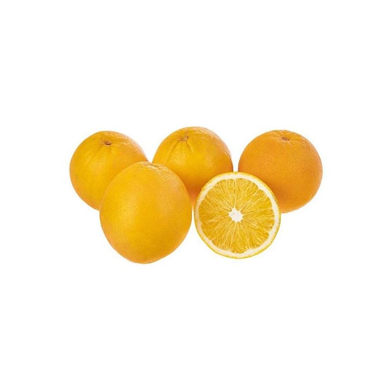 پرتقال تامسون مقدار 1 کيلو گرم